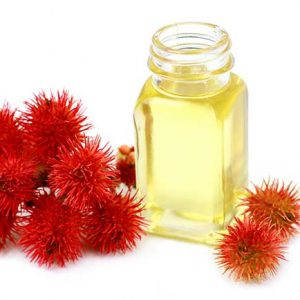 castor oil organic ingredient